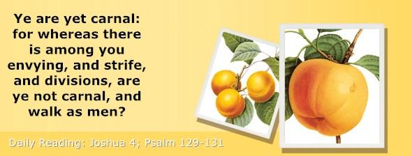 https://bibletruthpublishers.com/ComfortOfScriptures/wp-content/uploads/cos-hdg-2020-184.jpg