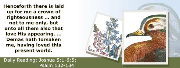 https://bibletruthpublishers.com/ComfortOfScriptures/wp-content/uploads/cos-hdg-2020-185.jpg