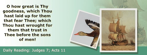https://bibletruthpublishers.com/ComfortOfScriptures/wp-content/uploads/cos-hdg-2020-206.jpg