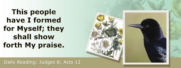 https://bibletruthpublishers.com/ComfortOfScriptures/wp-content/uploads/cos-hdg-2020-207.jpg
