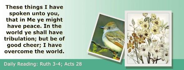 https://bibletruthpublishers.com/ComfortOfScriptures/wp-content/uploads/cos-hdg-2020-223.jpg