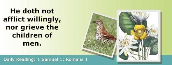 https://bibletruthpublishers.com/ComfortOfScriptures/wp-content/uploads/cos-hdg-2020-224.jpg