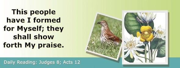 https://bibletruthpublishers.com/ComfortOfScriptures/wp-content/uploads/cos-hdg-2021-206.jpg