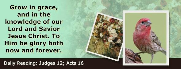 https://bibletruthpublishers.com/ComfortOfScriptures/wp-content/uploads/cos-hdg-2021-210.jpg