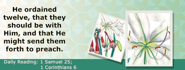 https://bibletruthpublishers.com/ComfortOfScriptures/wp-content/uploads/cos-hdg-2021-244.jpg