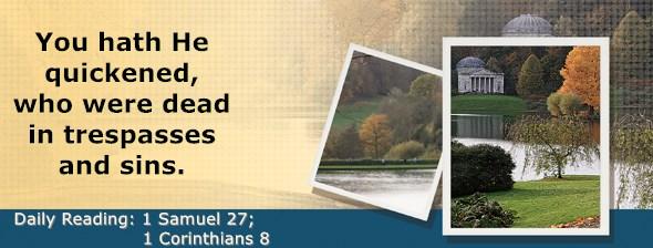 https://bibletruthpublishers.com/ComfortOfScriptures/wp-content/uploads/cos-hdg-2021-246.jpg