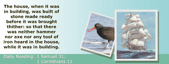 https://bibletruthpublishers.com/ComfortOfScriptures/wp-content/uploads/cos-hdg-2021-249.jpg