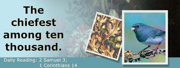 https://bibletruthpublishers.com/ComfortOfScriptures/wp-content/uploads/cos-hdg-2021-252.jpg