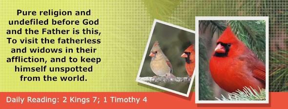 https://bibletruthpublishers.com/ComfortOfScriptures/wp-content/uploads/cos-hdg-2021-299.jpg