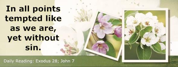 http://bibletruthpublishers.com/DailyLight/wp-content/uploads/dl-hdg-2014-152.jpg