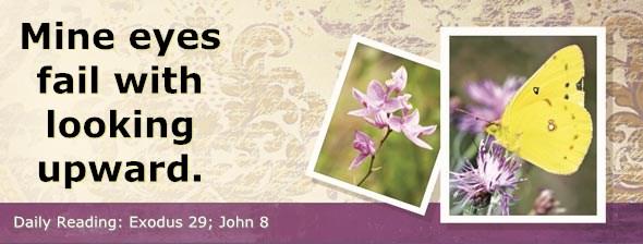 http://bibletruthpublishers.com/DailyLight/wp-content/uploads/dl-hdg-2014-153.jpg