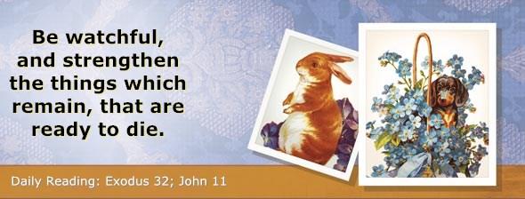 http://bibletruthpublishers.com/DailyLight/wp-content/uploads/dl-hdg-2014-159.jpg