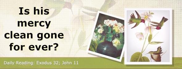 http://bibletruthpublishers.com/DailyLight/wp-content/uploads/dl-hdg-2014-160.jpg