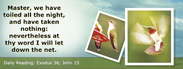 http://bibletruthpublishers.com/DailyLight/wp-content/uploads/dl-hdg-2014-168.jpg