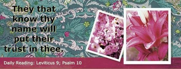 http://bibletruthpublishers.com/DailyLight/wp-content/uploads/dl-hdg-2014-192.jpg