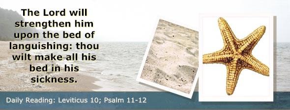 http://bibletruthpublishers.com/DailyLight/wp-content/uploads/dl-hdg-2014-194.jpg