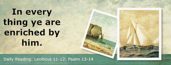 http://bibletruthpublishers.com/DailyLight/wp-content/uploads/dl-hdg-2014-195.jpg