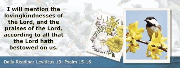 http://bibletruthpublishers.com/DailyLight/wp-content/uploads/dl-hdg-2014-198.jpg