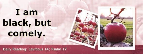 http://bibletruthpublishers.com/DailyLight/wp-content/uploads/dl-hdg-2014-199.jpg
