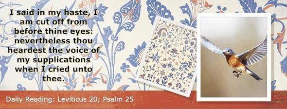 http://bibletruthpublishers.com/DailyLight/wp-content/uploads/dl-hdg-2014-211.jpg