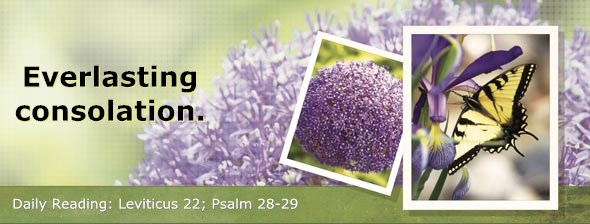 http://bibletruthpublishers.com/DailyLight/wp-content/uploads/dl-hdg-2014-216.jpg