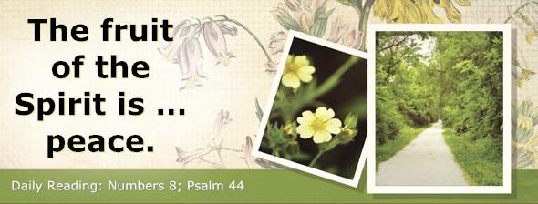 http://bibletruthpublishers.com/DailyLight/wp-content/uploads/dl-hdg-2014-241.jpg