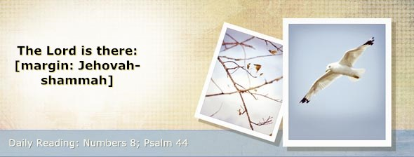 http://bibletruthpublishers.com/DailyLight/wp-content/uploads/dl-hdg-2014-242.jpg