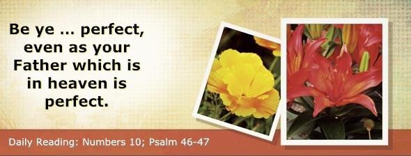 http://bibletruthpublishers.com/DailyLight/wp-content/uploads/dl-hdg-2014-245.jpg