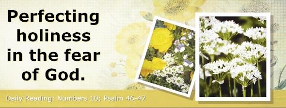 http://bibletruthpublishers.com/DailyLight/wp-content/uploads/dl-hdg-2014-246.jpg