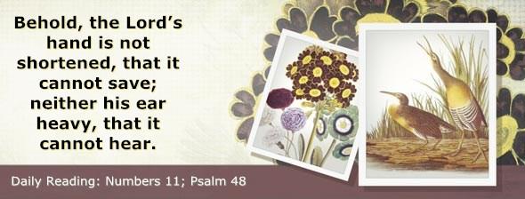 http://bibletruthpublishers.com/DailyLight/wp-content/uploads/dl-hdg-2014-247.jpg