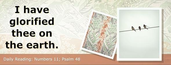 http://bibletruthpublishers.com/DailyLight/wp-content/uploads/dl-hdg-2014-248.jpg