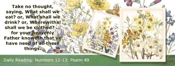 http://bibletruthpublishers.com/DailyLight/wp-content/uploads/dl-hdg-2014-249.jpg