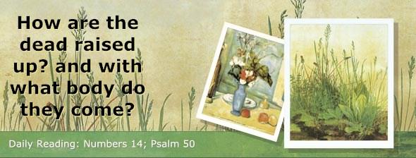 http://bibletruthpublishers.com/DailyLight/wp-content/uploads/dl-hdg-2014-252.jpg