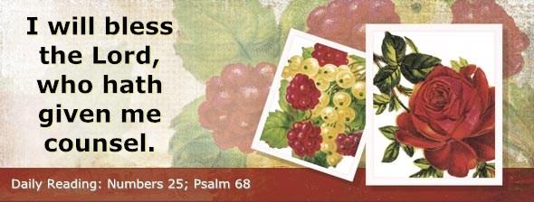 http://bibletruthpublishers.com/DailyLight/wp-content/uploads/dl-hdg-2014-272.jpg