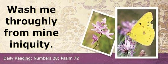 http://bibletruthpublishers.com/DailyLight/wp-content/uploads/dl-hdg-2014-277.jpg