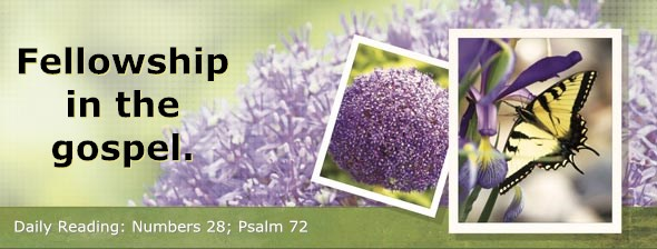 http://bibletruthpublishers.com/DailyLight/wp-content/uploads/dl-hdg-2014-278.jpg