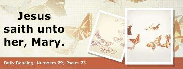 http://bibletruthpublishers.com/DailyLight/wp-content/uploads/dl-hdg-2014-280.jpg