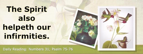 http://bibletruthpublishers.com/DailyLight/wp-content/uploads/dl-hdg-2014-284.jpg