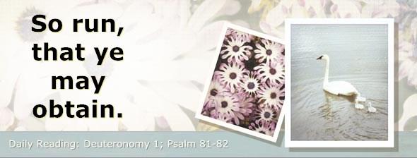 http://bibletruthpublishers.com/DailyLight/wp-content/uploads/dl-hdg-2014-296.jpg