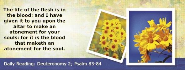 http://bibletruthpublishers.com/DailyLight/wp-content/uploads/dl-hdg-2014-297.jpg