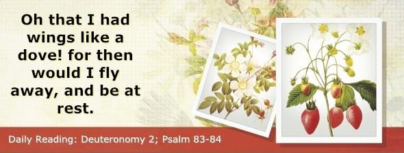 http://bibletruthpublishers.com/DailyLight/wp-content/uploads/dl-hdg-2014-298.jpg