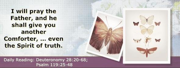 http://bibletruthpublishers.com/DailyLight/wp-content/uploads/dl-hdg-2014-347.jpg