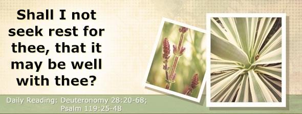 http://bibletruthpublishers.com/DailyLight/wp-content/uploads/dl-hdg-2014-348.jpg