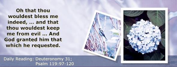http://bibletruthpublishers.com/DailyLight/wp-content/uploads/dl-hdg-2014-353.jpg