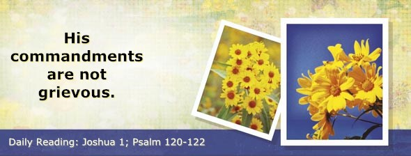 http://bibletruthpublishers.com/DailyLight/wp-content/uploads/dl-hdg-2014-359.jpg