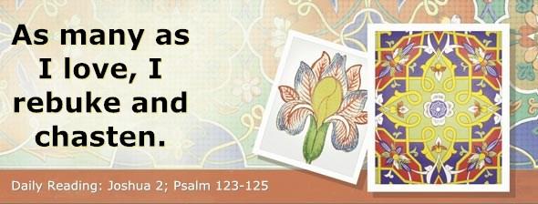 http://bibletruthpublishers.com/DailyLight/wp-content/uploads/dl-hdg-2014-361.jpg