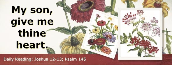 http://bibletruthpublishers.com/DailyLight/wp-content/uploads/dl-hdg-2014-382.jpg