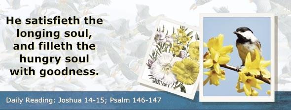 http://bibletruthpublishers.com/DailyLight/wp-content/uploads/dl-hdg-2014-384.jpg