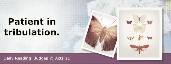 http://bibletruthpublishers.com/DailyLight/wp-content/uploads/dl-hdg-2014-409.jpg