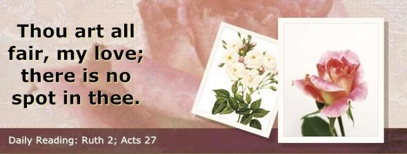 http://bibletruthpublishers.com/DailyLight/wp-content/uploads/dl-hdg-2014-441.jpg